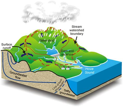 WATER RESOURCES MANAGEMENT A CASE STUDY IN POLLUTION IN A